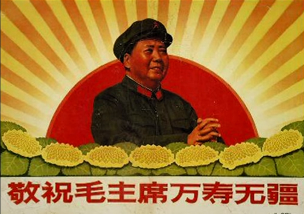 | מאו והחמניות | תצלום מסך מסרטון יוטיוב של ה-BBC | חן סיון | יהלומים | Chen Sivan Diamonds |